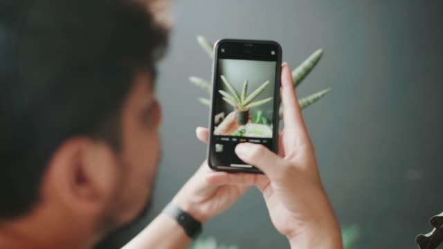Hipster man take photo to the plants and checking at home