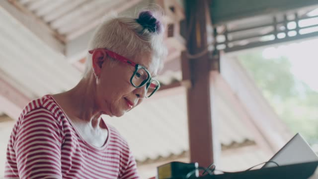 Hipster senior woman working with computer at home stock vdo video