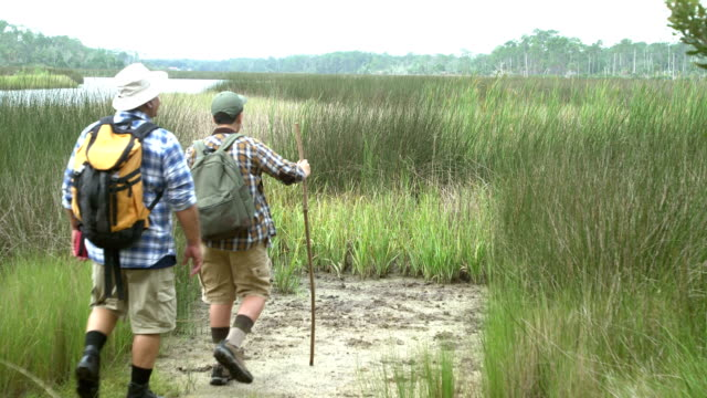 Hispanic boy and father hiking, view of wetlands A 12 year old Hispanic boy and his father, a mature man in his 50s, hiking near wetlands. They stop to enjoy the beautiful view of the water over the tall grasses. marsh stock videos & royalty-free footage