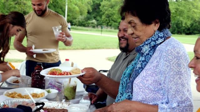 la famiglia ispanica gode di una riunione di famiglia nel parco - etnia latino americana video stock e b–roll
