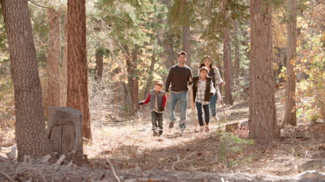 Hispanic Family Walking In A Forest Full Length Front View Video