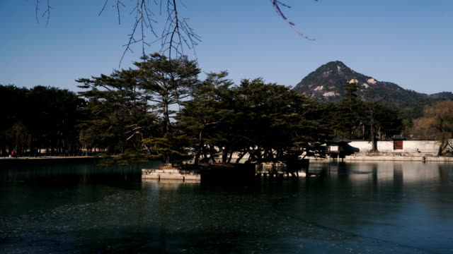 Historical museums of Seoul. Dressy Koreans visit the museum Historical museums of Seoul. Dressy Koreans visit the museum gyeongbokgung stock videos & royalty-free footage
