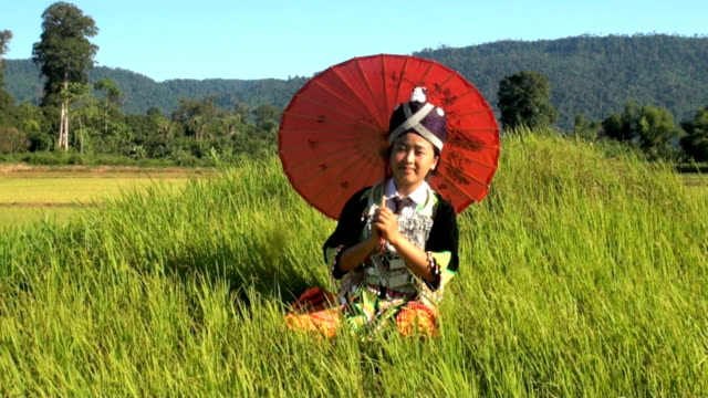 Hmong from Laos on rice paddy video