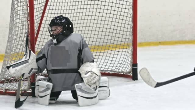 Hockey Goalie Training video