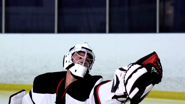 Hockey Player Goalie video