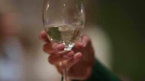 vídeos de stock e filmes b-roll de holding a wine glass - bebida