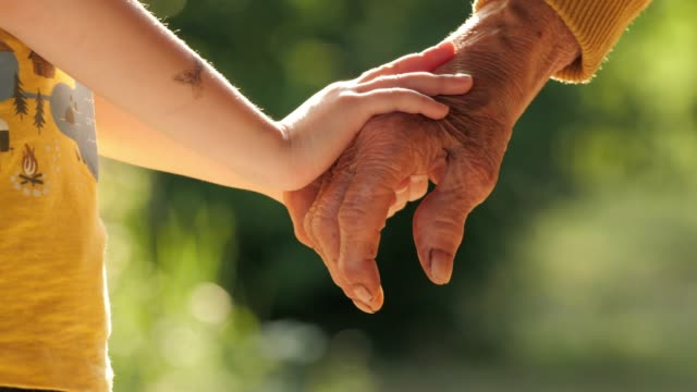 holding hands. detail of a child's hands holding the senior woman hands - grandparents stock videos & royalty-free footage