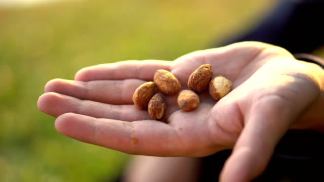 vídeos de stock e filmes b-roll de holding healthy almonds in hand - amendoas