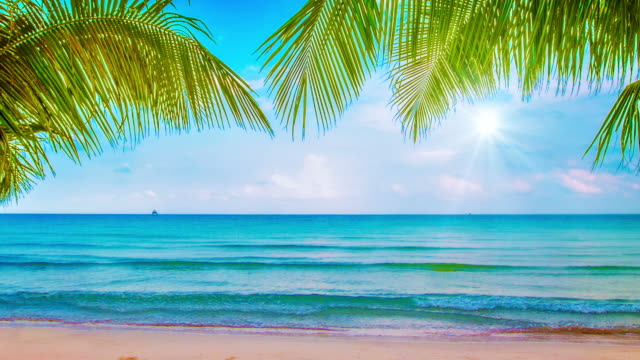 holiday beach - turkos blå bildbanksvideor och videomaterial från bakom kulisserna