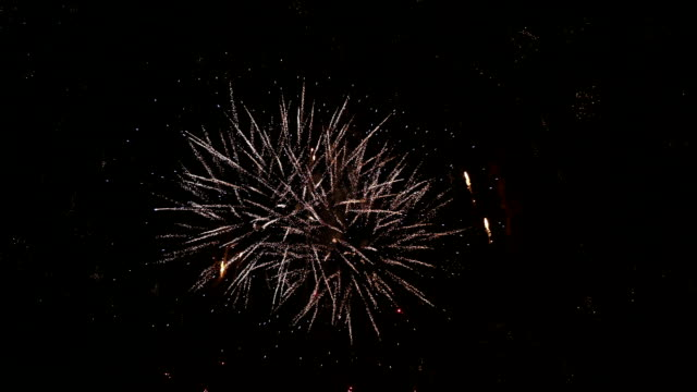 Holiday Day of the city. Fireworks. video