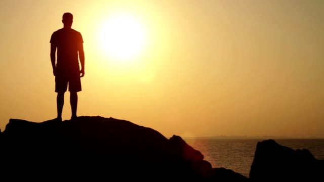 Holiday Silhouette  Tourism Sunset Beach Sea Success Concept video