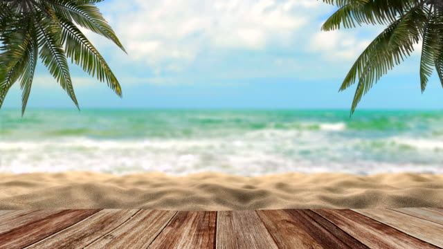 holidays on the sea under palm trees - albero tropicale video stock e b–roll