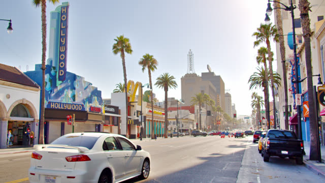 Hollywood Boulevard. Sunny. Palm Tree.