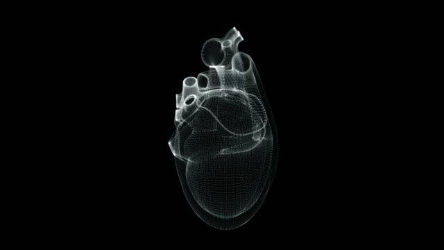 人体に心臓が鼓動するホログラム表現画面3d - 心臓点の映像素材/bロール