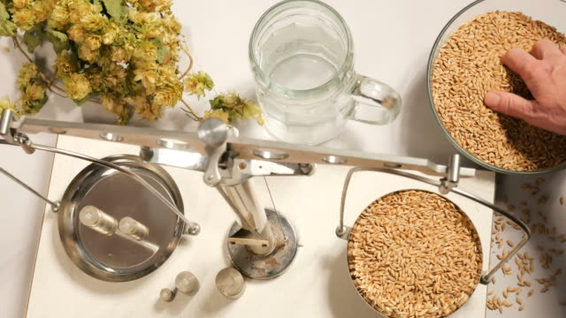 Home brewing of beer. Man weighs barley. View from above.