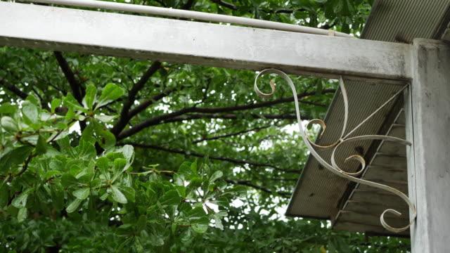 home decor design of green garden, rainy day scene