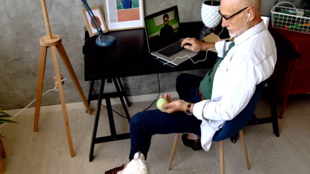 ホームオフィスの遊び場 - 愛玩犬点の映像素材/bロール