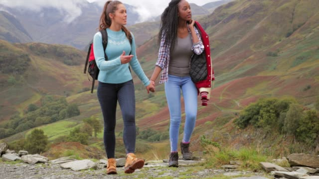 Homosexual Couple Hiking video