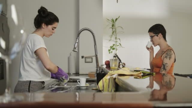 Homosexual People Gay Couple Lesbians Women Fighting Over Home Chores Lesbians at home, jealous girl washing dishes in kitchen, lazy partner chatting on smartphone. Homosexual people domestic life with woman and girlfriend. Young women, gay girls fighting during chores chores stock videos & royalty-free footage