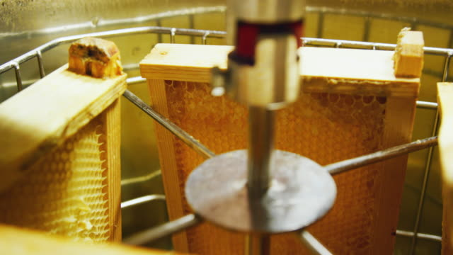 A Honey Extractor Machine Spins Honeycomb around and Uses Centrifugal Force to Remove Honey from the Comb