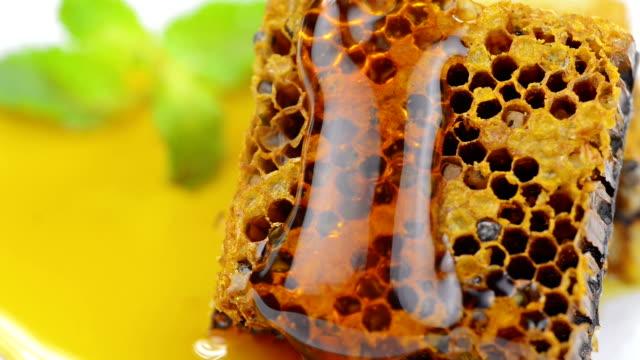 Honeycomb video