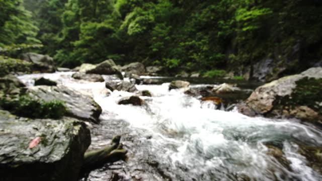 hongtan waterfall in huaping nature reserve,longsheng,guilin,china - longsheng filmów i materiałów b-roll