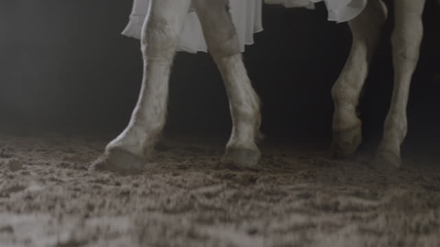 Hoof Of White Horse Walking On The Ground. White Cloth Covers The Horse.