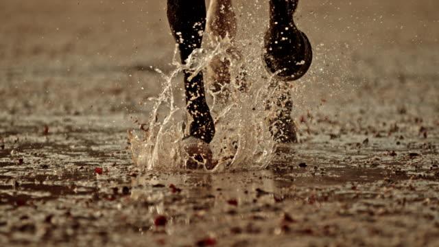 走っている馬のslo moのひづめは濡れた地面を打つ - 動物に乗る点の映像素材/bロール