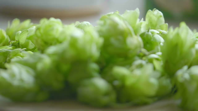 Hop cones falling on the table in slow motion 180fps