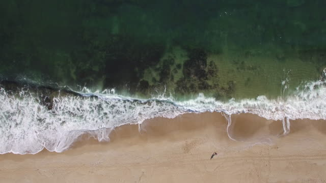 4K Horizontal aerial view of seaside video