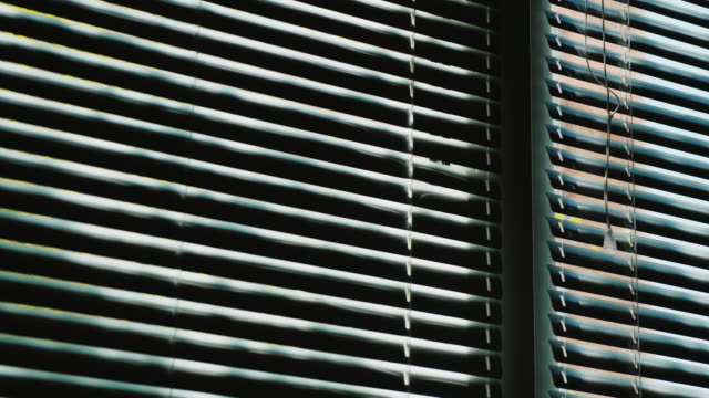 horizontal blinds open on the window. outside the window is spring, a tree grows with green leaves, the sun is shining - penombra video stock e b–roll