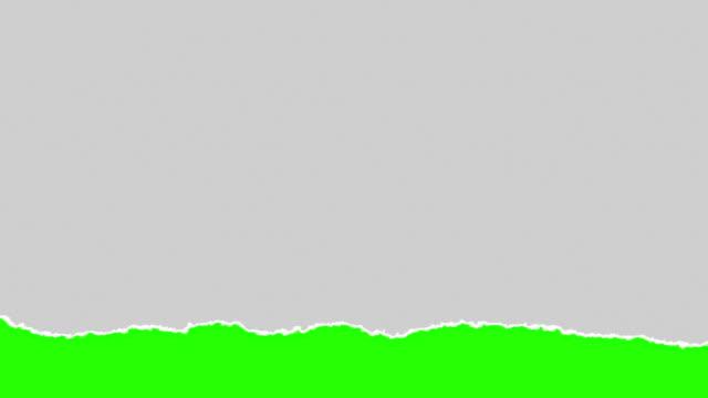 vídeos y material grabado en eventos de stock de horizontal gris papel rasgado con multi desgarrado efecto clave de croma verde - ripped paper
