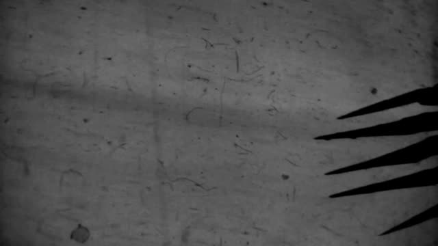 Horror Claws Spooky shadows on the wall. vampire stock videos & royalty-free footage