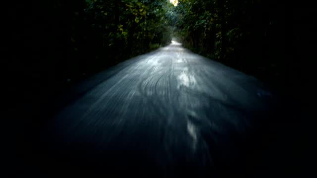horror uppfart på natten - liten skog bildbanksvideor och videomaterial från bakom kulisserna