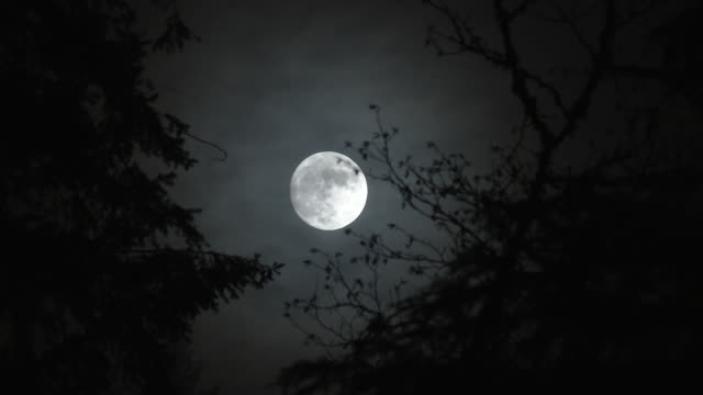 Horror Film Full Moon At Night Time Lapse