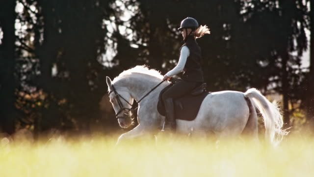 SLO MO TS Horse and female rider galloping across meadow