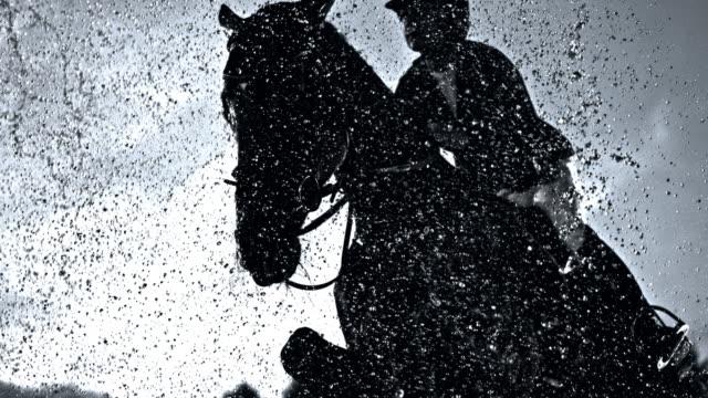 slo mo лошадь и его всадник прыгает через занавес воды - скаковая лошадь стоковые видео и кадры b-roll