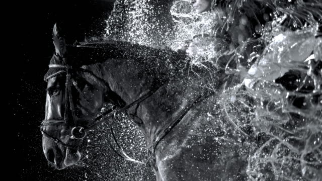 slo mo horse och hans ryttare hoppa genom ett vattenfall - häst bildbanksvideor och videomaterial från bakom kulisserna
