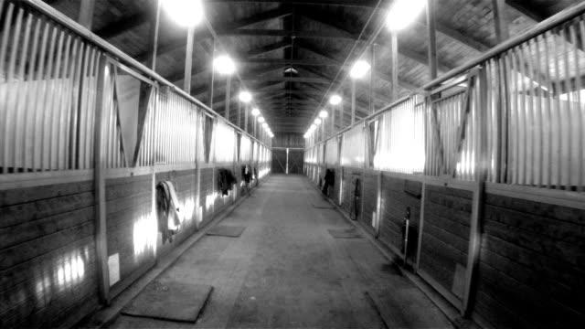 Horse Barn Animal Sport Paddock Equestrian Ranch Racing Stable video