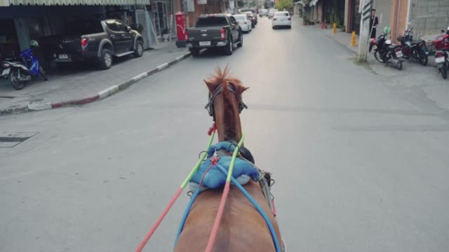 Horse carriage in the old town at Lampang city.