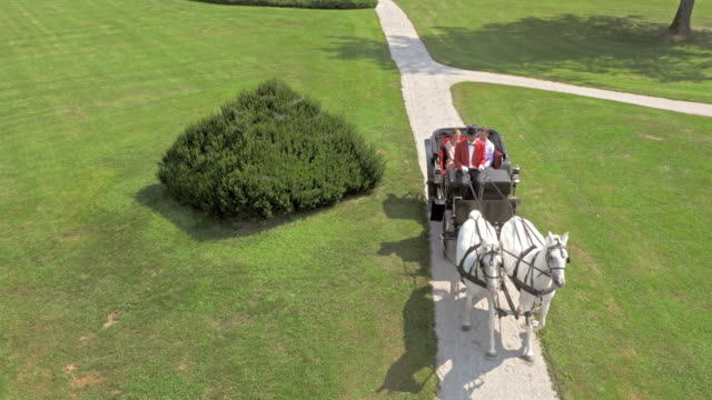 AERIAL Horse carriage ride around the castle park video