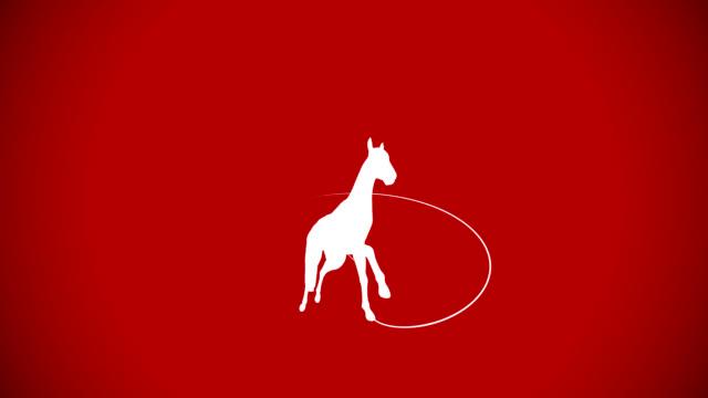 horse galopp auf rotem hintergrund - pferderennen stock-videos und b-roll-filmmaterial