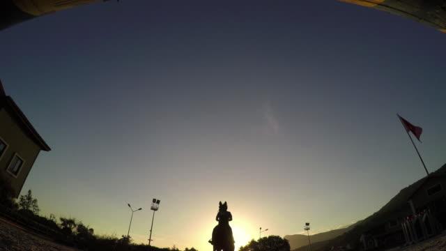 pferd springen hürde während dem sonnenuntergang, silhouette reiter - pferderennen stock-videos und b-roll-filmmaterial