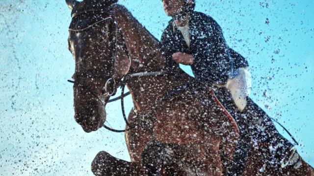 slo mo horse hoppar genom en vattenridå med sin ryttare - hästhoppning bildbanksvideor och videomaterial från bakom kulisserna