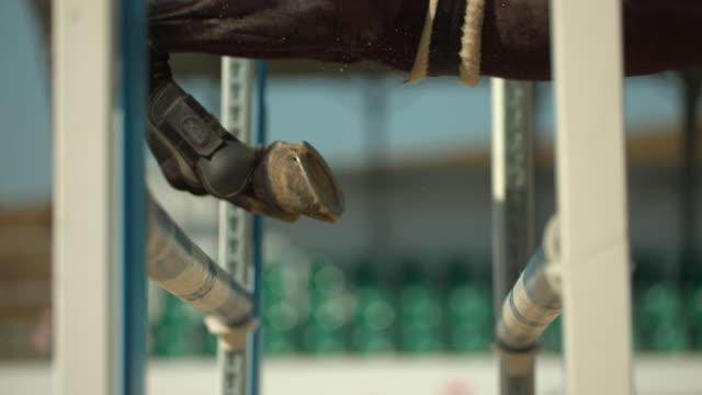 häst hoppar över hinder, ultra slow motion - häst tävling bildbanksvideor och videomaterial från bakom kulisserna