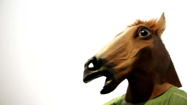 vídeos de stock e filmes b-roll de máscara de cavalo. engraçado vídeo. - bêbedo