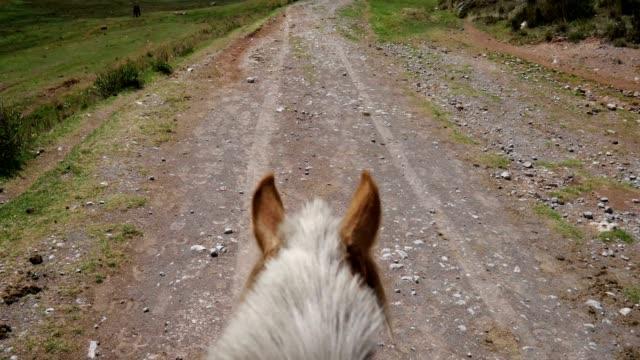 vídeos de stock, filmes e b-roll de cavalo na estrada de terra de montanha com rider ponto de vista - cavalgar