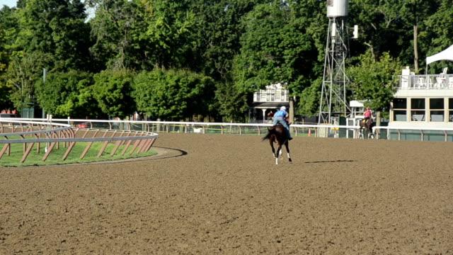 horse race practive - racehorse track bildbanksvideor och videomaterial från bakom kulisserna