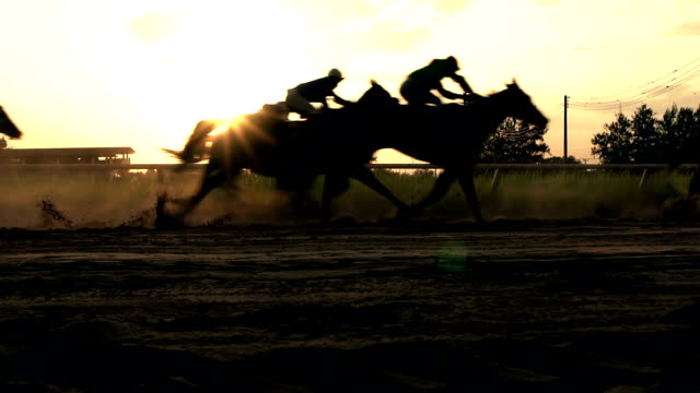 horse racing-real-time. - pferderennen stock-videos und b-roll-filmmaterial