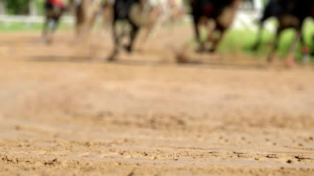 pferderennen, zeitlupe - pferderennen stock-videos und b-roll-filmmaterial